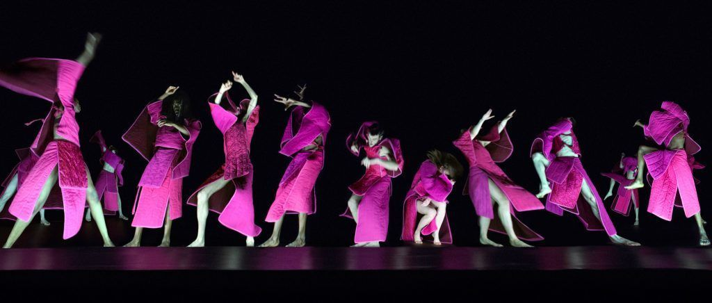 Ensemble 'This Bright Field' by Theo Clinkard. Photo: Theo Clinkard